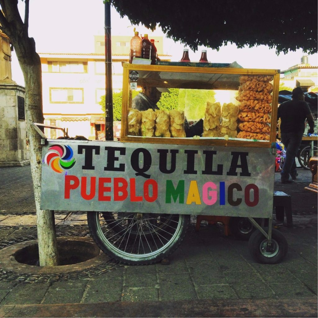 day trip to tequila jalisco
